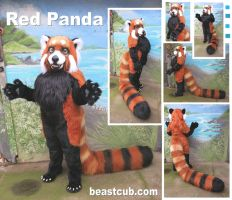 Red Panda by LilleahWest