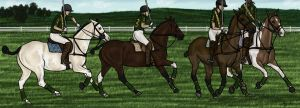 Polo Warm Up by cobra-farms