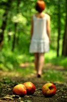 apple path by Elvenfaith