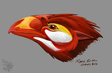 Reed Griffin - head study by calger459