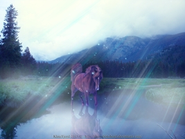 Horse in a magic lake by Klau--Lion-Heart