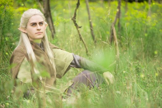 LotR: Moment of Solace by starleighcos