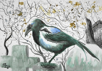 One for sorrow by SulaimanDoodle