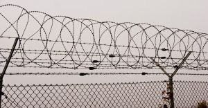 Barbed wire fence by archaeopteryx-stocks