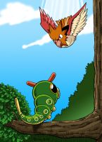 Spearow Vs Caterpie