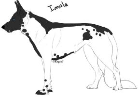 Imala-female-dalispots by Zykiel