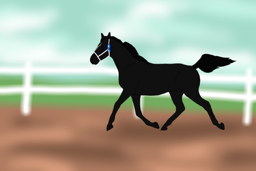 Blue Bowed Boy by Happy-Horse-Stable