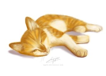 My Ginger Cat by ngelz