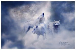 Moon wolves by I-X-O-R-A