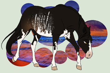 Kreela Ref [Astronia Herd] by Plants-And-Tattoos