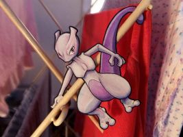Mewtwo's Laundry Service