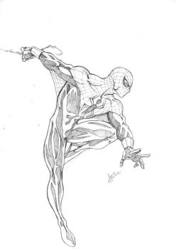 Alex Ross Spidey by sean-izaakse