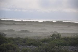 Fog aproaching by spartout