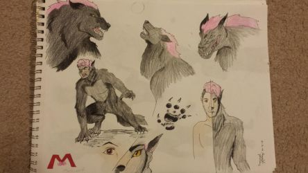 Markiplier werewolf  by Solar-S-Shift