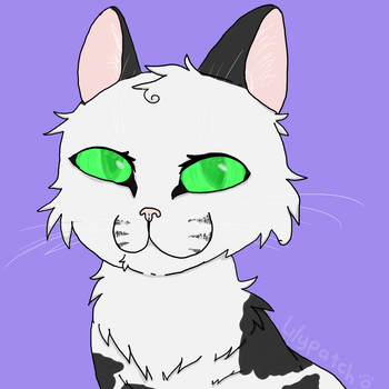 Lilypatch [ Warrior Cats OC ] by Pastelgoldfish
