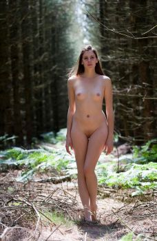 Woodland Beauty 3 by MTL3