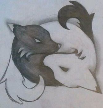 ying yang foxes by GummieBears16