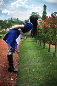 Alice Madness Returns Cosplay - Roses by Thecrystalshoe