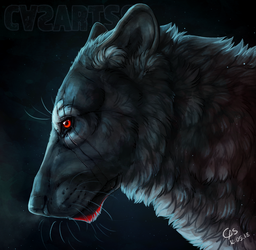 Last Wolf by CasArtss