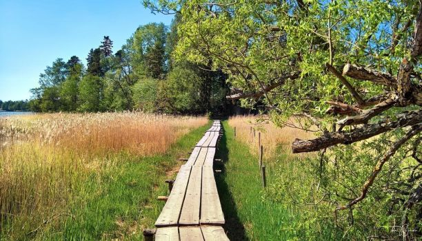 Summery trail to the island by Pajunen