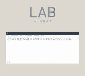 LAB WinRAR by participant