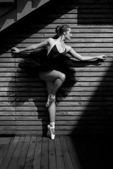 Black Swan by LadyMartist