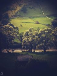 Good Morning, Bucovina by wireless-indie