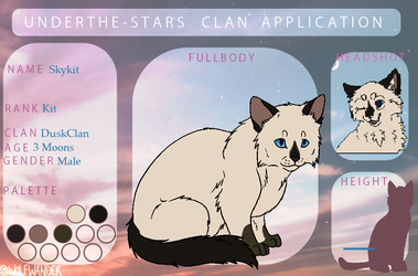 Skykit application | Underthe-stars by Gleeful-BarnOwl
