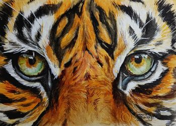 World Watercolor Month - Day 18 (Tiger) by Harmony1965