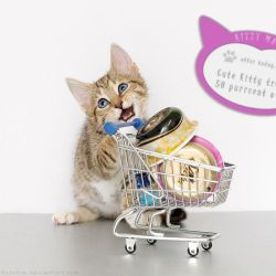 Kitty-mart 03 by hoschie