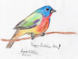 Painted Bunting by Maverick-Werewolf