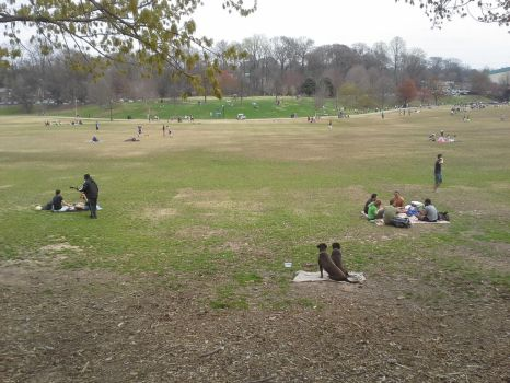 PLACES Dog Park by jimmylee1562