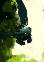 HTTYD by soft-h