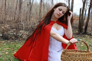 Little Red Riding Hood 5 by Anariel-Stock
