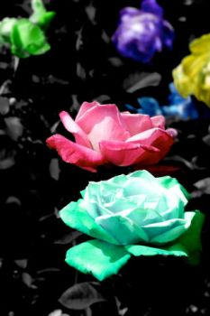 Wallpaper - Roses by HippieOtter