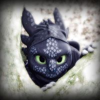 Toothless - The Alpha by TheBandicoot