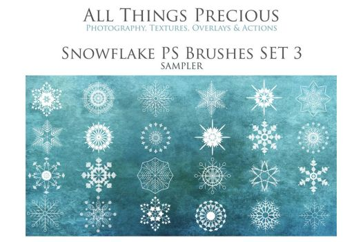SNOWFLAKE BRUSHES SET 3 by AllThingsPrecious