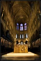 Inside Notre Dame by Haywood-Photography