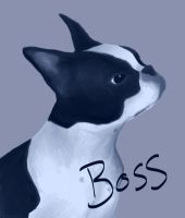 Boss by artisticpuppy