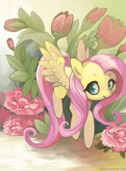 Traveling Pony Museum Submission -Fluttershy- by Mazzlebee