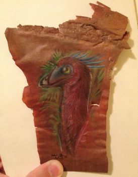 Archeopteryx on Madrona Tree Bark by That-Green-Monster