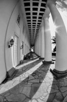 Columns by SmartyPhoto