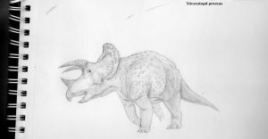 Triceratops prorsus traditional by Paleop