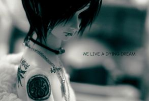 We live a dying dream. by Maestro-Amadeus