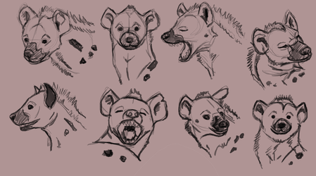 some hyena heads by Tianithen