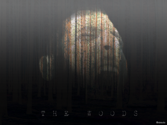 sample - the woods by defeale
