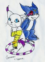 Gatomon and Veemon by Iceheart-Lunarae