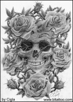 Skull with roses by cigla