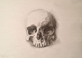 Traditional Skull Drawing by adammiconi