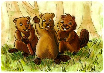 The clever beavers by Eleithel